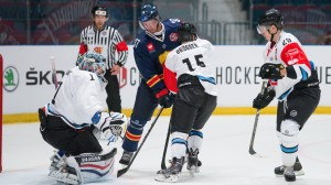 Djurgarden Stockholm v Fribourg-Gotteron - Champions Hockey League
